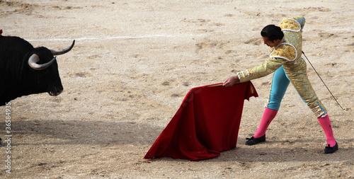 Papiers peints Taurin corrida