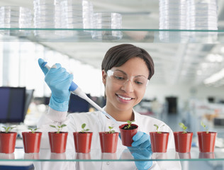 Scientist injecting plants in lab