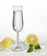 clear drink and citrus fruits