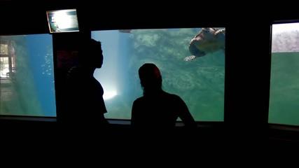 People in aquarium
