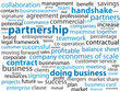 PARTNERSHIP Tag Cloud (business contract commerce teamwork)