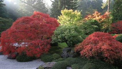 Japanese Flat Sand Garden in Fall Season