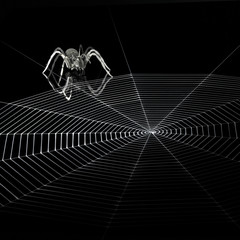 metal spider and spiderweb
