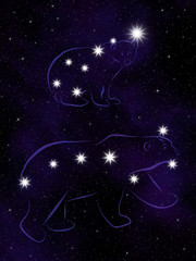 The Great Bear (Ursa Major) and the Little Bear (Ursa Minor)