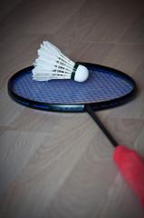 shuttlecock on racket