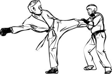 Karate Kyokushinkai sketch martial arts and combative sports