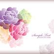 camellia background
