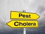 Sie haben die Wahl: Pest oder Cholera? poster