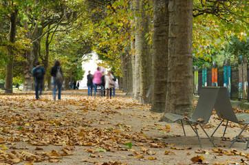 students hurry through parc in autumn