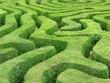 Labyrinth - 36652736