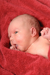 newborn baby after bath