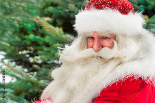 Leinwanddruck Bild Santa Claus portrait smiling against christmas tree outdoor in s