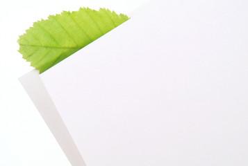 Blatt und Blattpapier