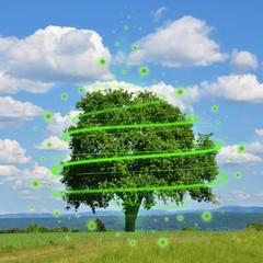 Symbolbild für den Umweltschutz
