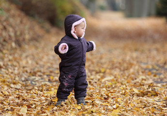 Cute todder in an autumnal park