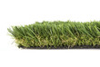 artificial grass on a white background