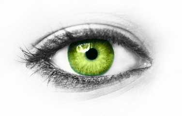 Green eye isolated