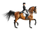 Equestrian sport - dressage poster