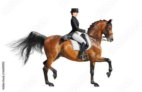 Leinwanddruck Bild Equestrian sport - dressage
