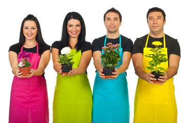 Four florist workers showing plants