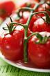 Closeup of fresh cherry tomatoes on the vine