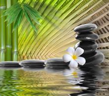 spa pierres, bambou avec frangipanier