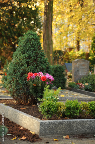 Friedhof 2