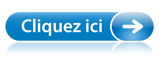 """Bouton Web """"CLIQUEZ ICI"""" (se connecter cliquer connexion accès)"""