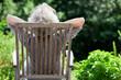 Leinwanddruck Bild - grauhaarige Frau entspannt im Garten