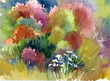 Watercolor Landscape Collection: Summer
