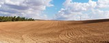 Panorama of yellow plowed field on cloudy day