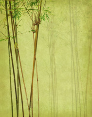 bamboo on old grunge antique paper texture © xiaoliangge