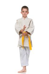 Confident serious boy in kimono