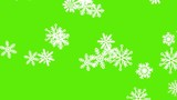 Different sort of snowflakes, effect snowfall. Green screen