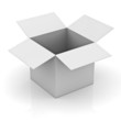 Blank opened white cardboard box