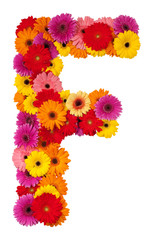 Letter F - flower alphabet isolated on white