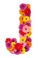 Letter J - flower alphabet isolated on white