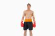 Boxer standing