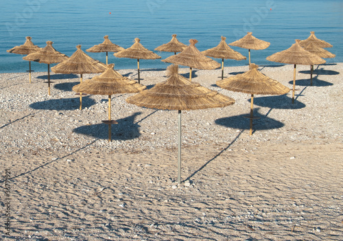 beach umbrellas ordered in rows