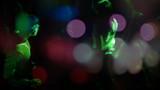 Night club. Sequence