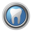 "3D Style Button ""Dental Medicine / Dentistry"""