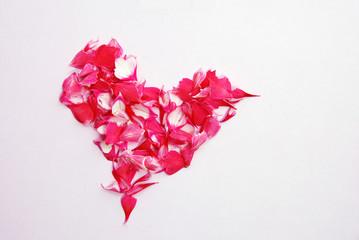 Pink heart of petals