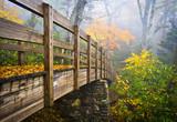 Fototapety Autumn Appalachian Trail Foggy Nature Blue Ridge Fall Foliage
