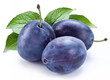 Group of plums with leaf.