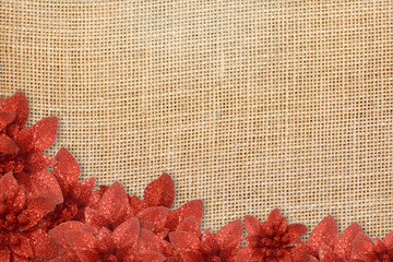 rustic background Christmas poinsettias