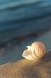 Strandurlaub - Sonne, Sand und Meer