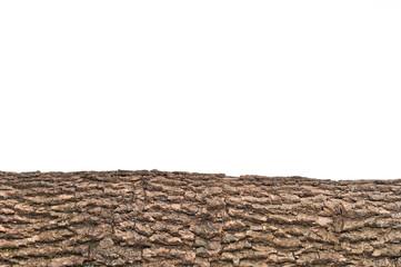 Isolated stump/ stub bark with wooden texture
