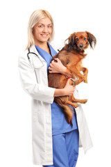A smiling female veterinarian holding a puppy