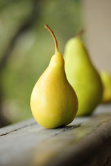 Village yellow pear