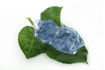 Leaf in blue ice